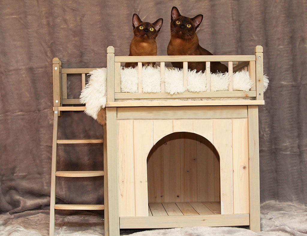 Домик для кошки из дерева своими руками чертежи