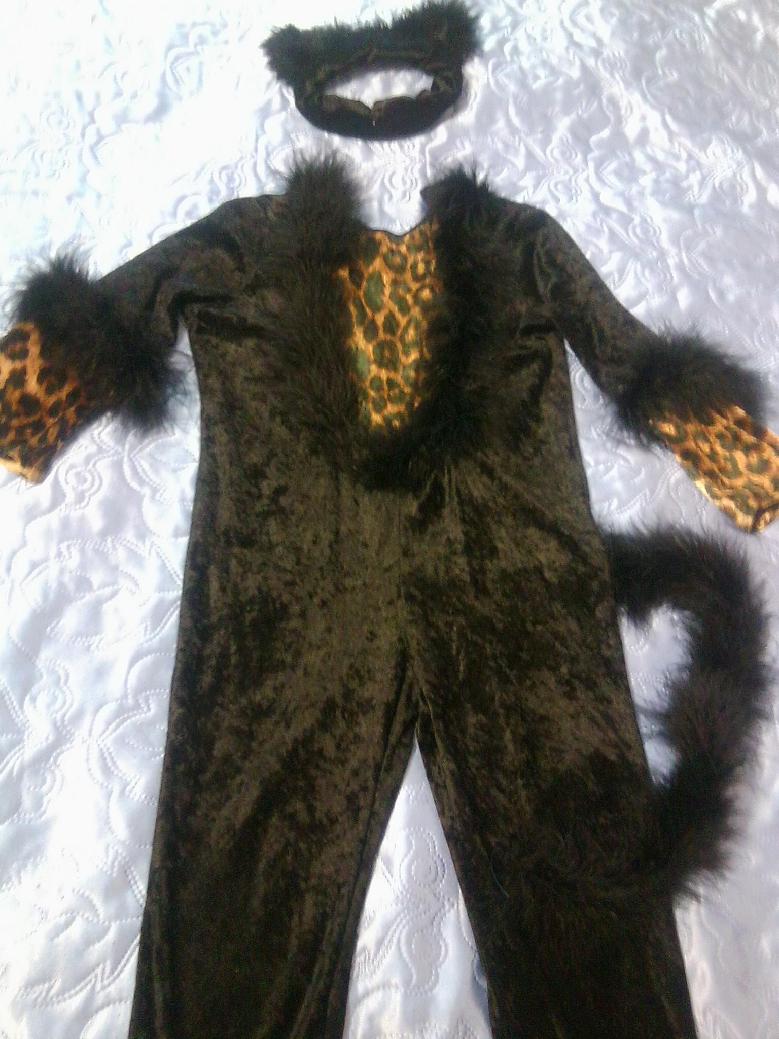 Выкройка костюма для кошки своими руками