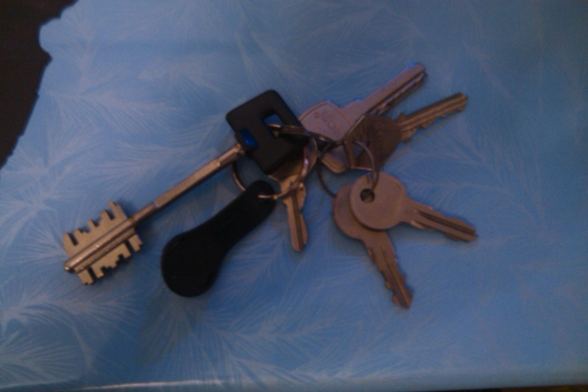 В прошлом году найдены ключи.