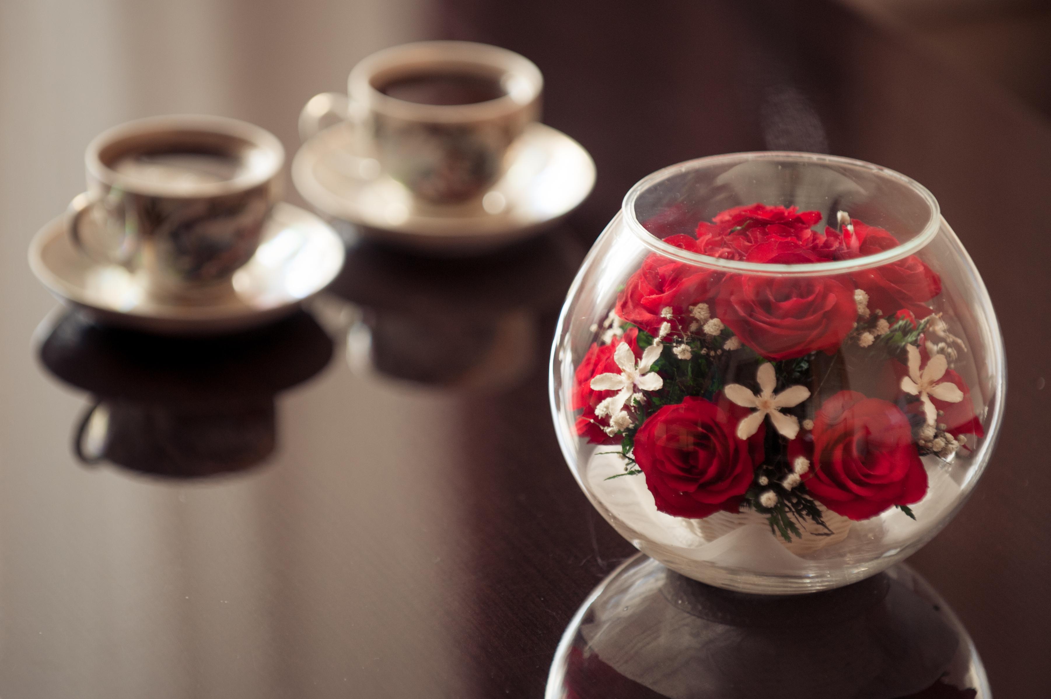 Живые цветы в стекле нижний новгород доставка цветов и подарков подснежники