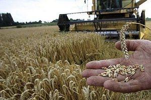 Сельскохозяйственная экспериза