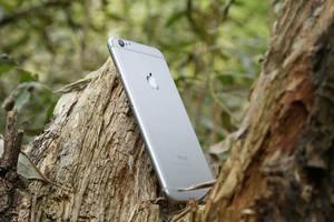 IPhone 6 – преимущества новинки