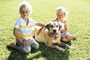 Выбор собаки для ребёнка