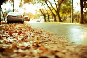 Подготовить автомобиль к осени