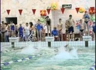 Сегодня в Черемушках стартует Чемпионат Хакасии по плаванию