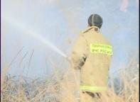 Сегодня утром в Черемушках полностью сгорел дачный домик