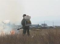 Специалисты администрации Саяногорска начали предпринимать противопожарные меры
