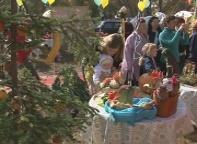 Сельхозярмарки ярмарки станут для Саяногорска привычным делом