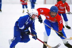 Саяногорские хоккеисты - вторые в Хакасии