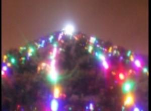 В новогодние праздники саяногорцы добровольно сдали в полицию четыре ружья и 63 патрона