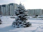 В Саяногорске ожидается похолодание