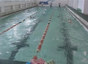 Саяногорские пловцы снова лучшие