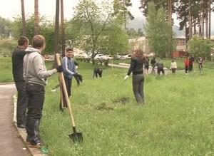 В парке поселка Черемушки высадили саженцы молодых дубов