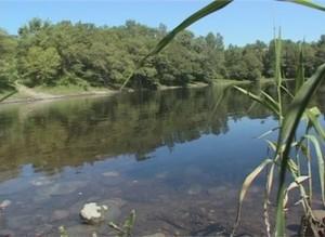 В трех саяногорских водоемах вода не соответствует санитарным нормам