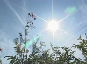 В Саяногорск пришла аномальная жара