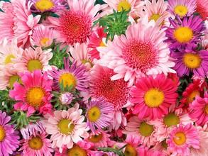 Накануне весеннего праздника сотрудники полиции Саяногорска дарили городским автоледи цветы