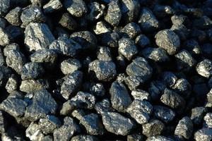 Общественность Саяногорска познакомили с оценкой воздействия на природу коксового комплекса