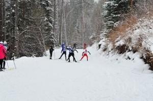 В Черемушках пройдет республиканское первенство по лыжным гонкам
