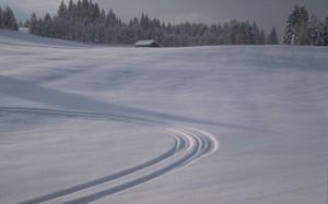 В Черемушках завершились соревнования по лыжным гонкам