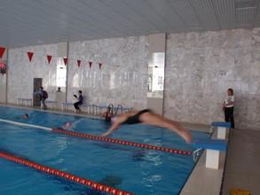 В бассейне ФСК «Черемушки» прошло первенство по плаванию среди женщин