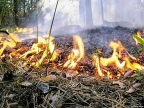 На территории Саяногорска сохраняется напряженная пожарная обстановка