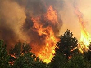 За первомайские праздники в Хакасии сгорело 70 гектаров леса