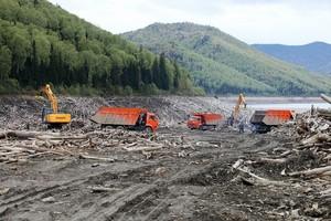 Возобновлена очистка Саяно-Шушенского водохранилища от плавающей древесины