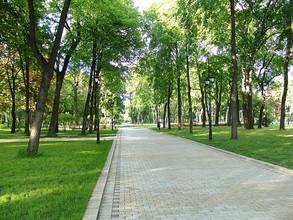 Парк активного отдыха построят в Саяногорске