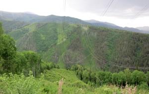 МЭС Сибири расчистят почти 900 га трасс ЛЭП в Хакасии, Тыве и на юге Красноярского края