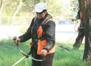 В Саяногорске продолжается массовое истребление травы