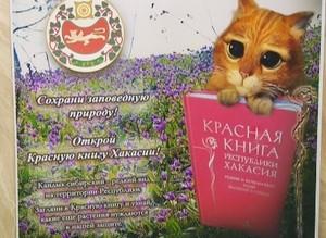 «Саяногорские встречи» объединили борцов за экологию