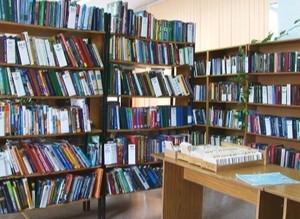 Библиотекари взялись за профилактику подростковой преступности