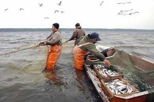 В Хакасии появится 25 новых рыбопромысловых участков