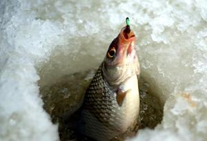 В Хакасии для подледного лова пригодны только закрытые водоемы