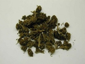 В Абакане задержали двух мужчин с 3 кг марихуаны