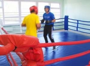 Саяногорские боксеры заняли три призовых места