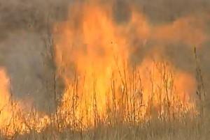 В Хакасии за сутки зарегистрировано 57 степных пожаров и палов травы