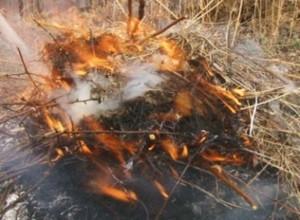 Пожарные напомнили саяногорским дачникам правила безопасности