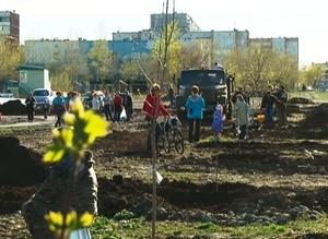 В парке активного отдыха высадили клены и каштаны