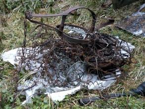 """Более 300 браконьерских петельбыло обнаружено на территории заповедника """"Саяно-Шушенский"""""""