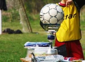 В Черемушках завершился турнир по футболу среди дворовых команд