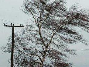 Сильный ветер уронил электроопору в Майна