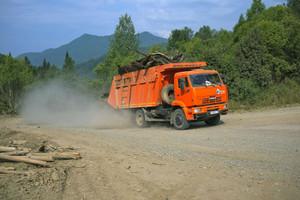 Саяно-Шушенское водохранилище очистят от плавающей древесины