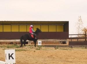 Саяногорск примет Первые открытые республиканские соревнования по адаптивному конному спорту