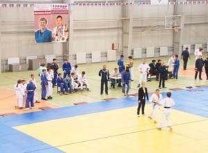 В минувшие выходные в ФОКе РУСАЛа прошел Межрегиональный турнир по дзюдо