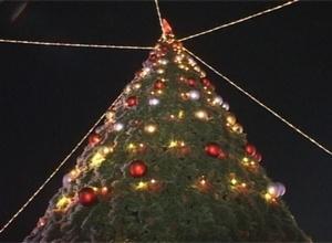 В Абакане с 10 декабря елки начнут продавать, в Саяногорске – заготавливать