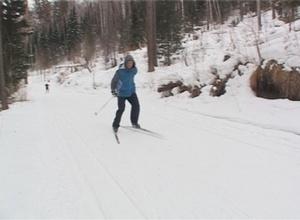 Черемушки зовут всех на лыжню