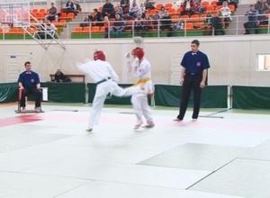 Саяногорские спортсмены продолжают пополнять копилку достижений