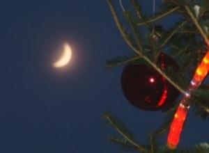 В Саяногорске готовятся демонтировать новогодние елки
