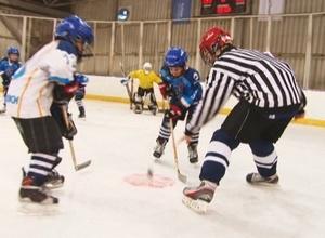 Юные хоккеисты из Черемушек поборются за призы Регионального турнира